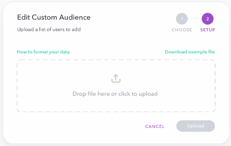 edit custom audience - snap ad