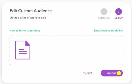 edit custom audience pt. 2 - snap ad