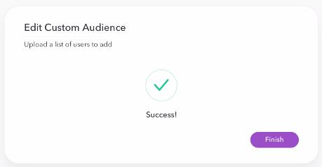 edit custom audience pt. 4 - snap ad