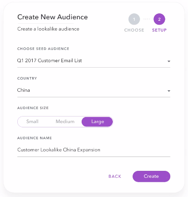lookalike custom audience